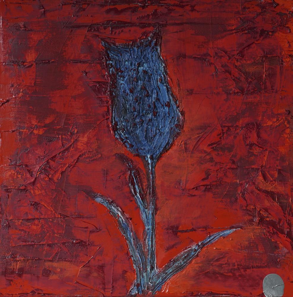 Blue Tulip, Kivanc Nalca